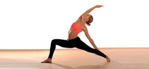 Yoga Vinyasa @ Salle des Tourelles | Fontaine-le-Bourg | Normandie | France